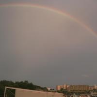 虹だぁぁ!