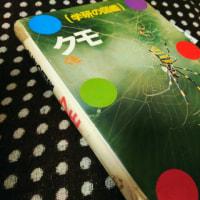 学研の図鑑、クモ
