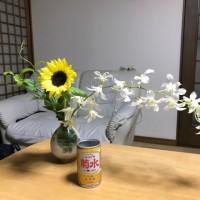 Tonight's Sake is 'Funaguchi Kikusui'.