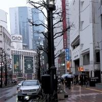 渋谷は雨だった その4