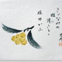 1311話 「 梅雨入り後初めての雨 」 6/21・水曜(雨)