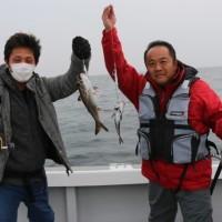 3月23日 春の旬の魚達!