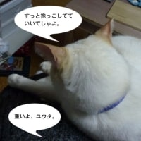 抱っこ〜!