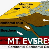 インチキ動画 「この地球に山や森は存在しない」(後篇) の診断書