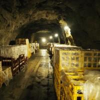 那須烏山「山あげ祭」と東力士洞窟酒蔵 烏山線を完乗