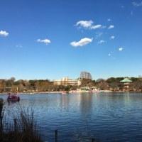 不忍池の水面に映る雲とビル群