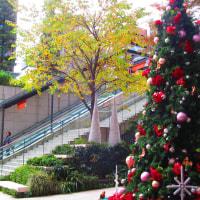 クリスマスツリー 京橋