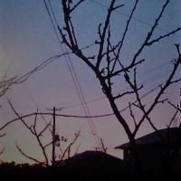 朝焼けに浮かぶ富士山ライクのシルエット