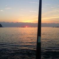 【テニスと無関係:釣り】2016年12月4日「アオリイカのヤエン釣り」