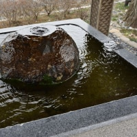 2017/02 如月雨水の館林城沼を往く
