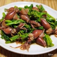 もうすぐ春ですね♪ 菜の花・ホタルイカ・蕗の薹レシピいろいろ