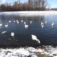あさまふるさと村  あさま36の冬