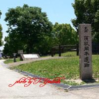 お散歩 岡本遺跡公園 Lumix FZ30