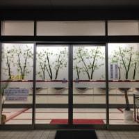 コインランドリーの木漏れ日:夜景