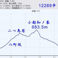 2016/10/24 高野・小都知の峯