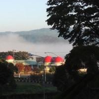 朝霧の町に冬の使者