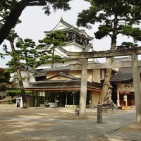 家康公を祭る 愛知県岡崎市「龍城神社」