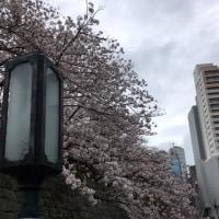 春の嵐とともに・・・