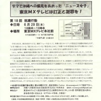 7.1糸数慶子参院議員(沖縄)千葉講演