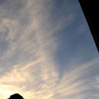 264  刷毛で掃いた様な雲