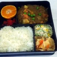 2017-01-17 今日のお弁当
