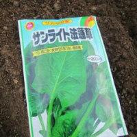 野菜作り(31)昨日の続き~空き地を再利用