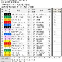 ■菊花賞結果報告