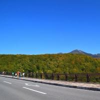 城ヶ倉大橋の紅葉