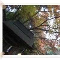 12月朔日(師走)&歌会
