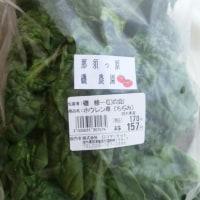 おもしろ野菜