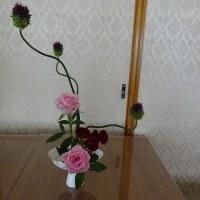 4月のお花 バラ スプレットバラ 丹頂アリアム(ゆり科)です(´∀`*)