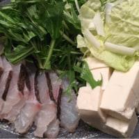 佐賀県玄海町から鯛しゃぶセット(5000円の寄付)