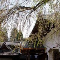岩村、歴史の街並み(重要伝統的建造物群保存地区)。