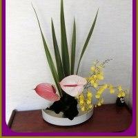ツバメの巣立ち生け花