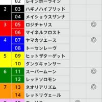 8/21【札幌記念[GⅡ]】[枠連]的中!予感