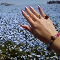 花と空と私