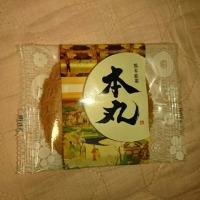 熊本弁日記(^_^)~本丸!