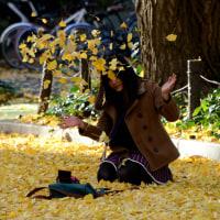 落葉と たわむれる美女