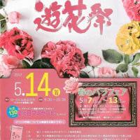 母の日に贈るバラ色の時間第22回遊花祭 in  日田市天瀬農業公園