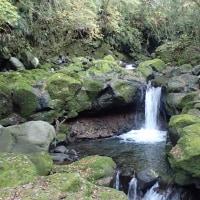 須津川渓谷の小滝