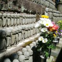 鎌倉長谷寺🏮お地蔵さん石仏群 画像10枚