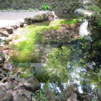 のこり2池!