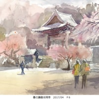 春の鎌倉光明寺