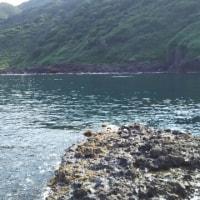 6月20日  加茂沖磯:チャポチャポ島