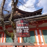 パワースポット探索~賀茂別雷神社(上賀茂神社)~