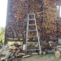 ストーブ用薪の調達