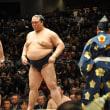 大相撲人気が止まらない。