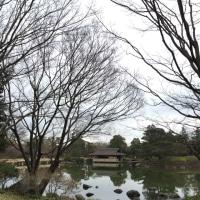 4月30日(日)新松戸FIRE BIRD アンクルボーイ