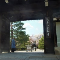 仁和寺 - 旧御室御所 - ②