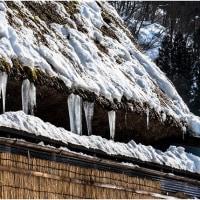 雪国の氷柱を久しぶりに